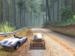 Um dos mais bem feitos jogos pra PS1! Need For Speed Porshe Unleashed.